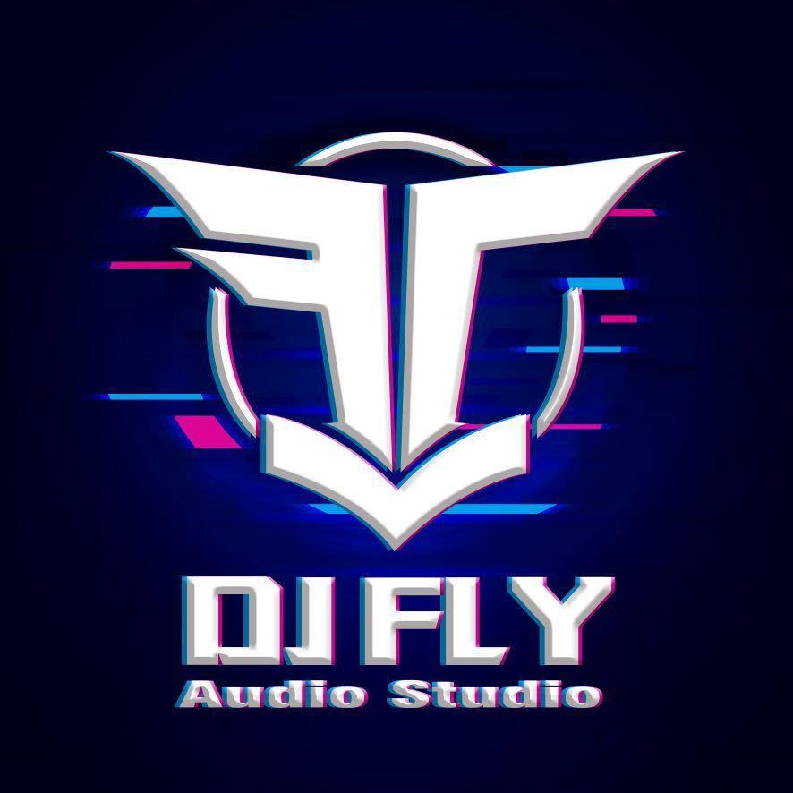 电台专辑-DJFLY海飞丝独家私房音乐2020